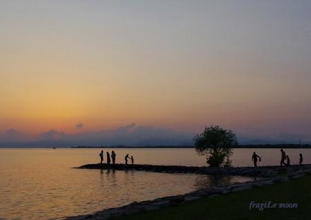 豊公園の日没2