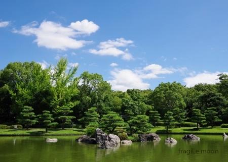 8月の大仙公園