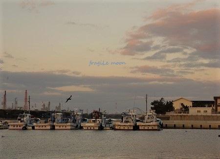 高石漁港d