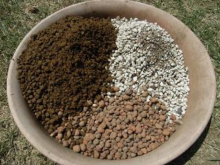 シャコバサボテンの土をブレンド