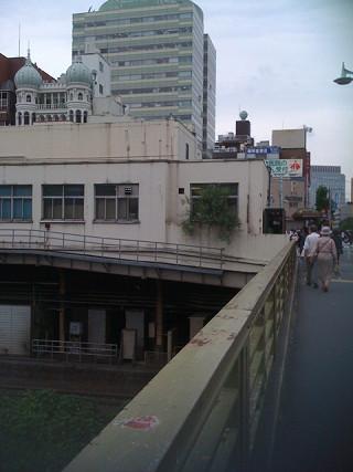 お茶の水の橋上駅舎の植物