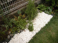 白砂利の庭