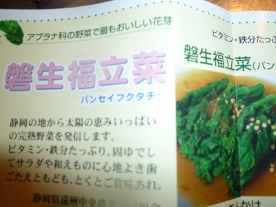 金針菜とは、その効能について   たべるご