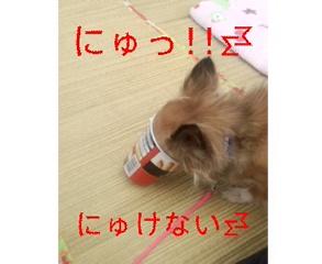 110410_115404_ed.jpg