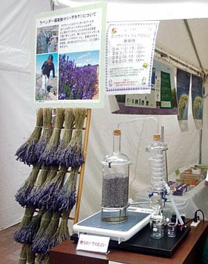 『エコライフ・フェア2013』の公益社団法人 日本アロマ環境協会のブース