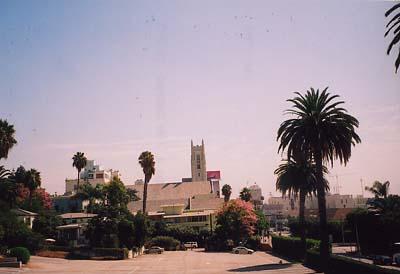 LAの街並み2