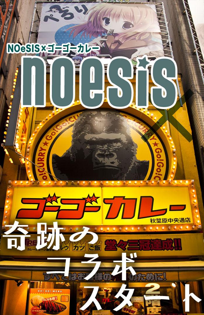 NOeSIS
