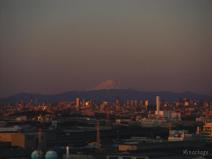 Fuji from Funabashi