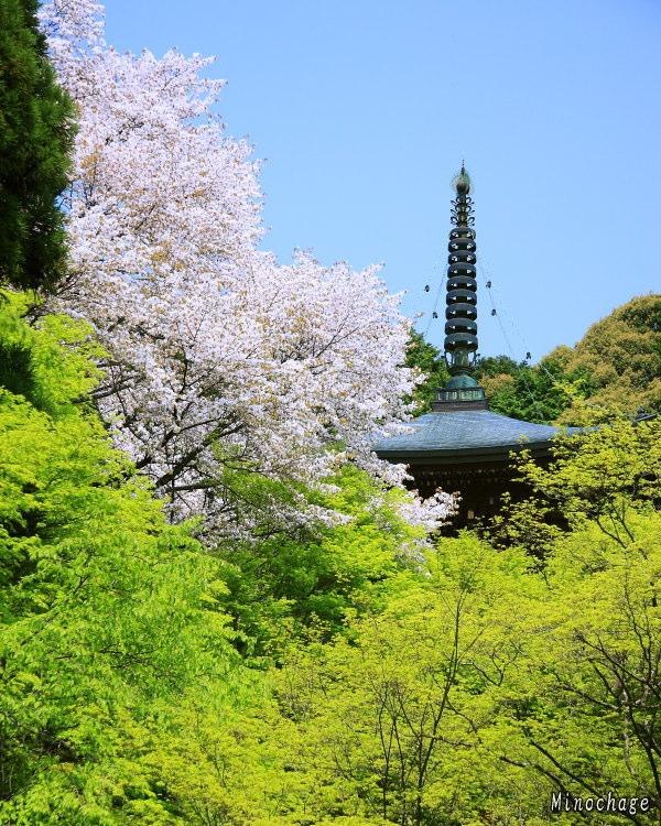 京都−神護寺01