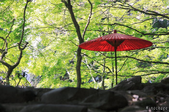 神護寺参道の茶屋