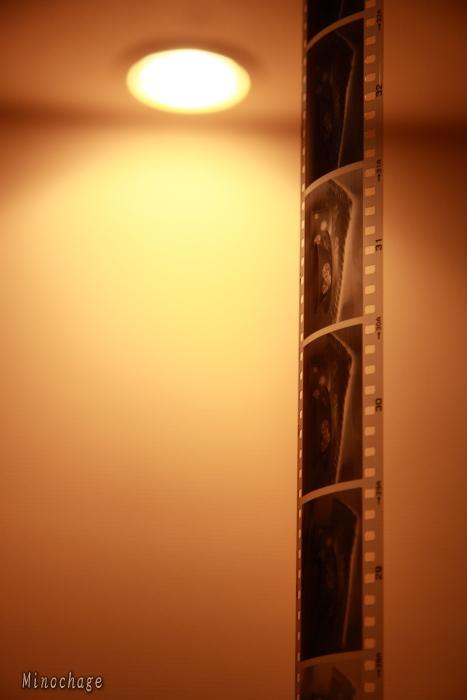 初のフィルム現像