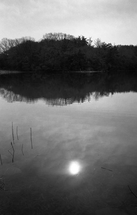 水面の太陽
