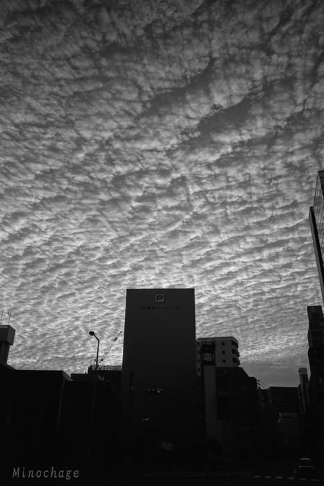 豪快な鱗雲