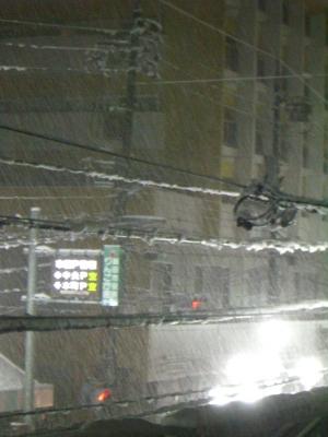 20110214雪