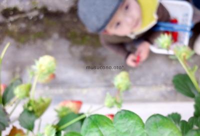 photo 396.jpg