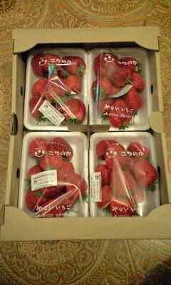 イチゴ〜苺〜