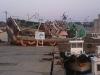 魚市場前海の状況2