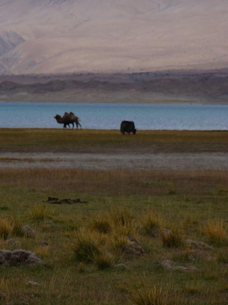 パミール高原