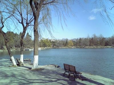 北京大学その3