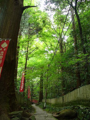 犬鳴山の参道