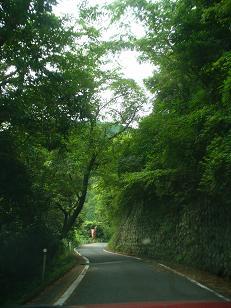 林道犬鳴東手川線その2