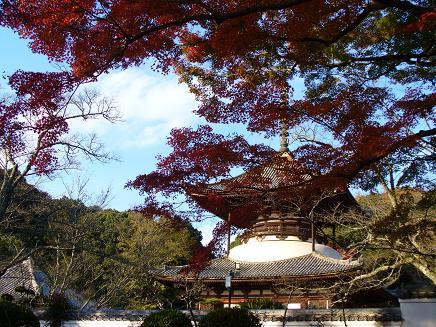 根来寺の大塔 (国宝)