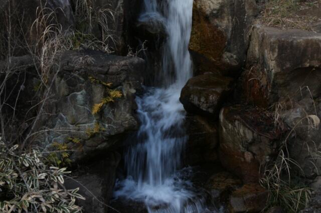 「ツキノワグマの棲み処にあった滝」