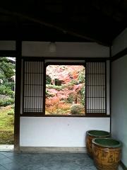 sairaiin20101128-s.jpg
