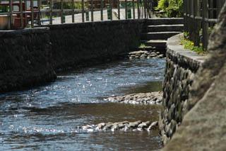 釜川の流れ1