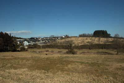 牧草地東側