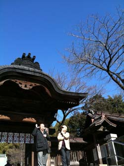 二荒山桜250
