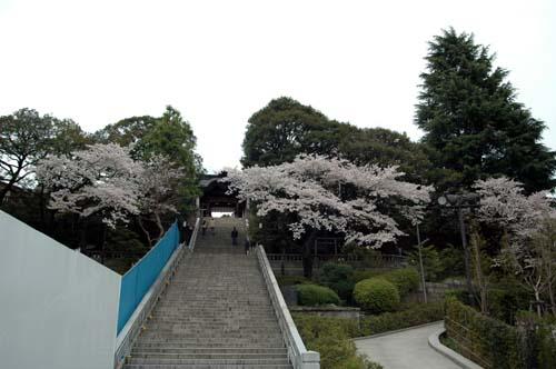 二荒山神社神門100413