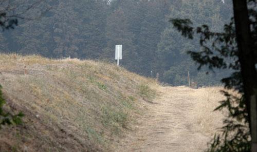 牧草地の小道