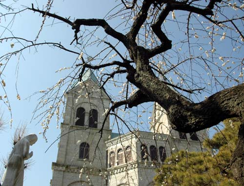 教会と梅とマリア様