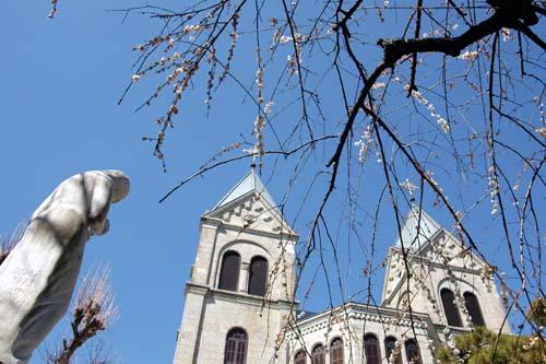 梅、教会とマリア様