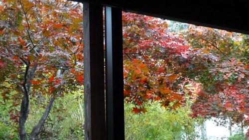 紅葉の見えるレストラン