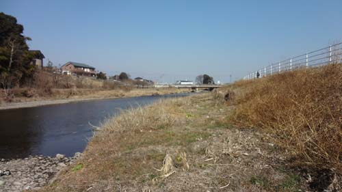 草萌える田川
