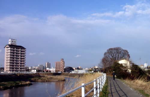 金井田橋上流
