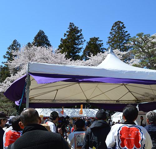 相撲テント