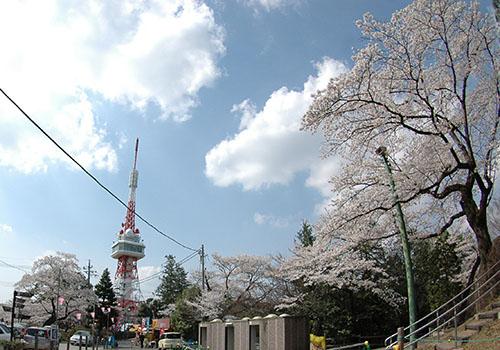 八幡山櫻タワー