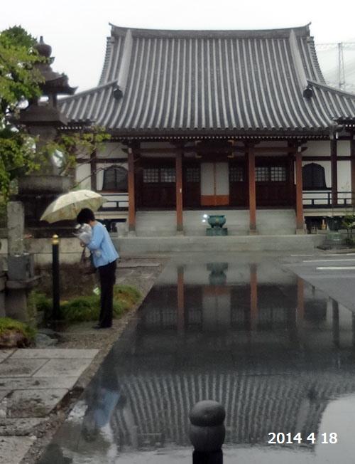 雨の常念寺