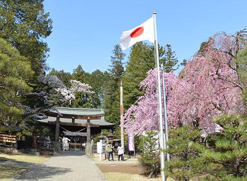 桜の蒲生神社