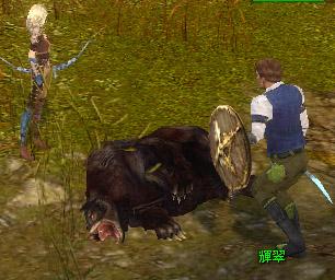 GW熊死体