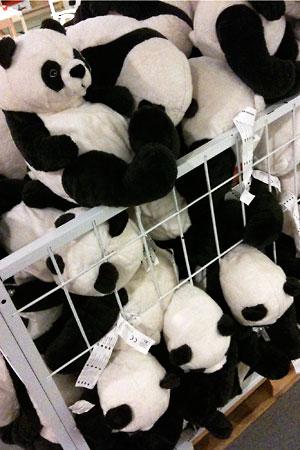パンダてんこもり