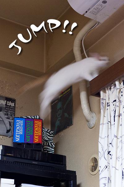 ジャンプするブレブレのJOJO