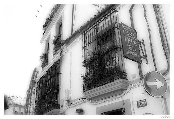 2012スペイン|アンダルシア