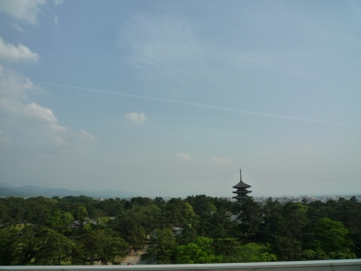 奈良県庁の屋上と五重塔