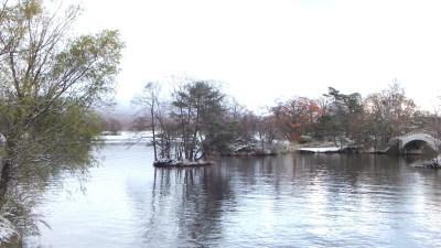 本日の大沼湖