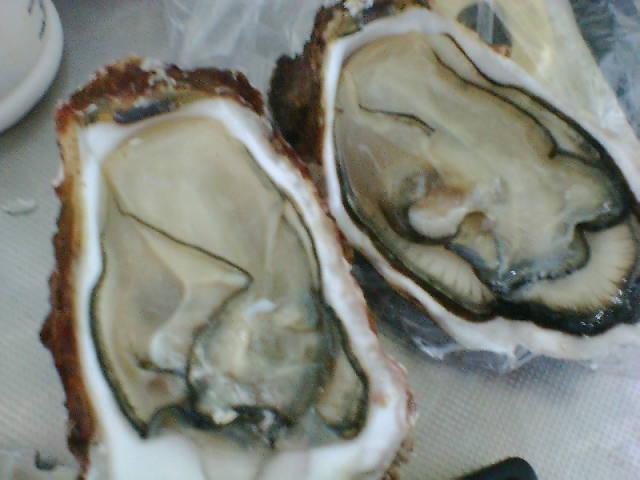 2005/12/10 牡蛎〜剥いた