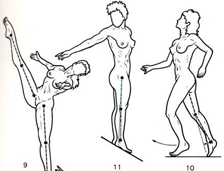 うるうカイロプラクティック、鹿児島県、霧島市、水泳、クロール、自由形、推進力、膝の過伸展、しなり、バランス、筋膜、アナトミートレイン、